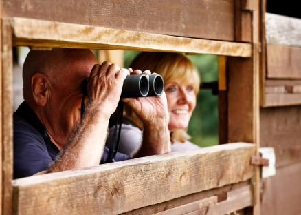 Bird-watching-breaks-holiday-Hunstanton-Norfolk